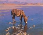 STYKA, Adam 1890-1959 Donkey